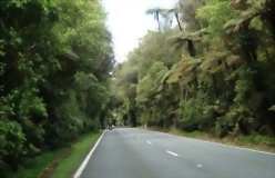 Kirra Tours Classic 9 Day New Zealand Wanderer 2020/21 - day 7