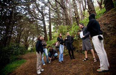 Lord of the Rings Full Day Tour with Wellington Rover