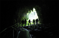 Spellbound Glowworm and Cave Tour from Waitomo
