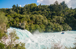 Grand Pacific Tours 16 Day Highlights of New Zealand - day 11