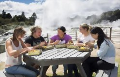 21 Day Ultimate North Island Tour - day 10