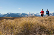 Tekapo Trek with Alpine Recreation