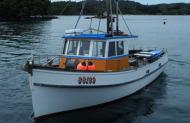 Tequila Fishing Charters Stewart Island