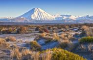 Scenic Flight - World Heritage Volcanic Safari