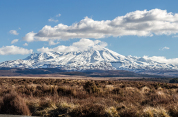 Taupo to Waitomo via Tongariro National Park