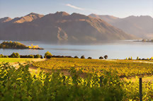 Tour suggestions: Essential New Zealand tours