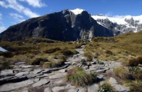 Southern Highlights and Milford Track Guided Walk - Day 8