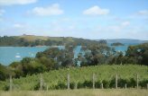 Taste of Waiheke Vineyard Tour
