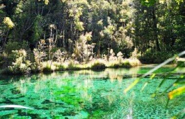 Waikaremoana Discovery 4 Day Walking Tour