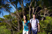 Coast and Rainforest Full Day Tour with Bush and Beach