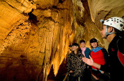 Auckland to the caves of Waitomo