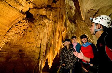 Auckland to Rotorua including Waitomo Caves with GreatSights