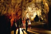 Waitomo Glow Worm Caves