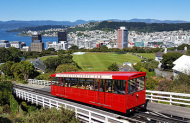Wellington City and Bays Tour with GreatSights