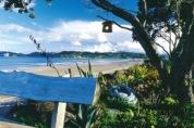 Rotorua to Tairua, Coromandel Peninsula