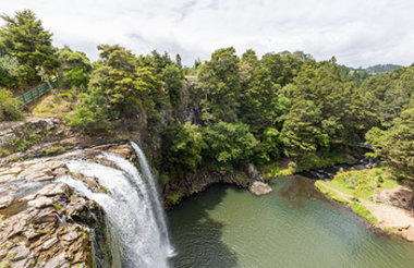 Paihia to Auckland with GreatSights