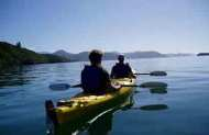Full Day Queen Charlotte Sound Guided Kayak with Wilderness Guides