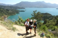 5 Day Queen Charlotte Track Premier Guided Walk with Wilderness Guides