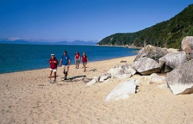 Seals, Beach Cruise and Walk