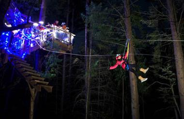 Ziptrek Eco Tour Moa 4 line tour