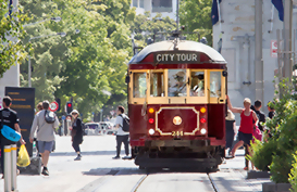 Explore the city of Christchurch on their pristine trams