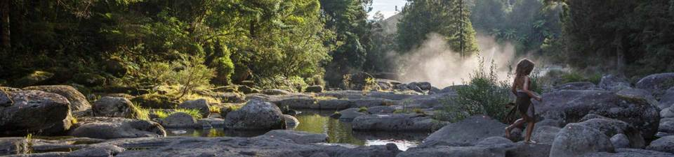 Pete's Dragon film location, New Zealand