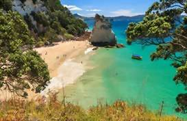 A view looking out to Cathedral Cove, Coromandel