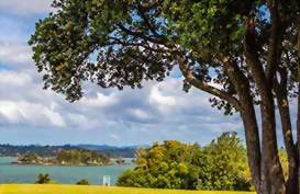 Waitangi park in the Bay of Islands