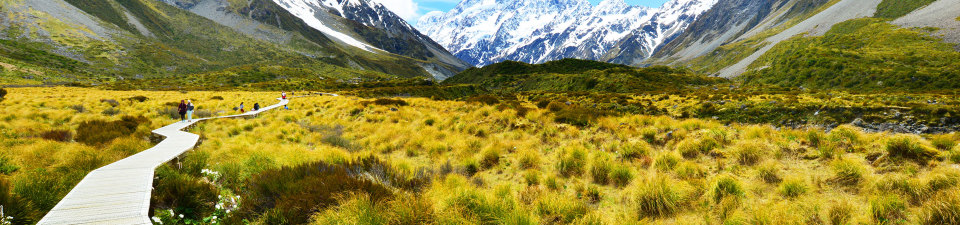 Walking in the Southern Alps, NZ
