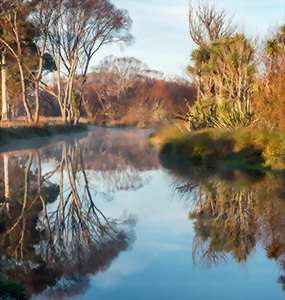 The Styx River in Christchurch