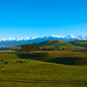 Kaikoura Countryside