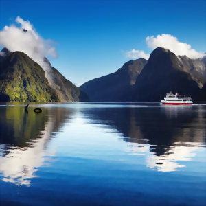 Calm morning in Fiordland, Milford Sound