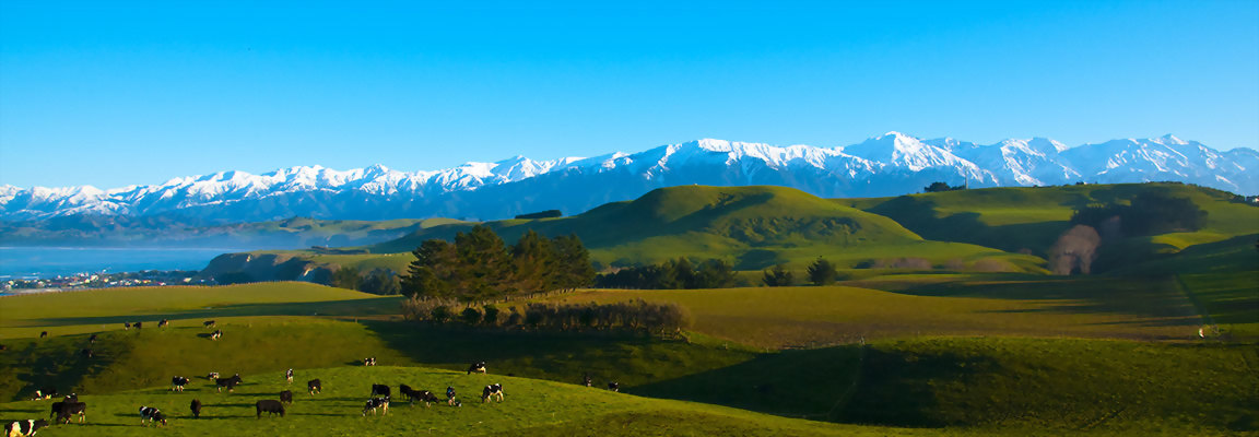 Kaikoura mountains and coastline New Zealand