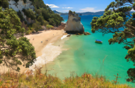Aerial View of Cathedral Cove Coromandel