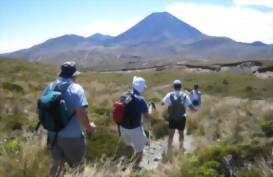 People out on the walking tour of Tongariro