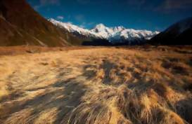 Mount Cook Guided Walks