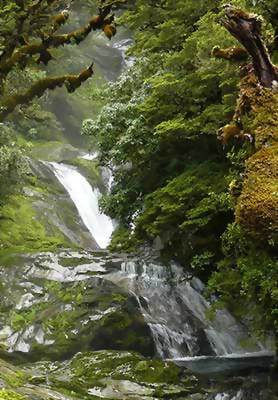 Milford Track, Fiordland, New Zealand