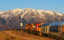 2 day TranzAlpine and West Coast Glaciers to Queenstown