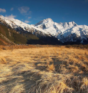 Grasslands of Mount Cook National Park