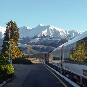 Travel on the beautiful TranzAlpine scenic train
