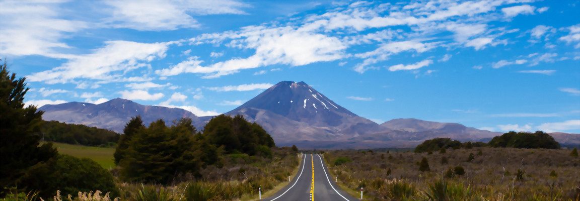 Road to Mt Ngaurahoe, North Island, New Zealand