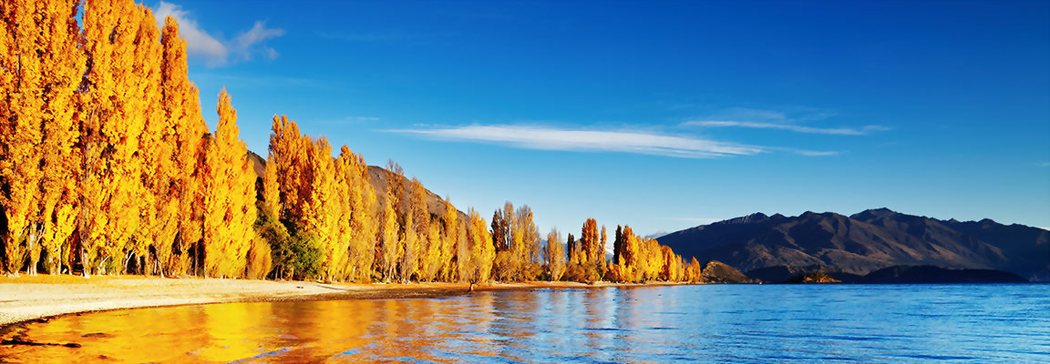 Wanaka Autumn Trees on the Lake