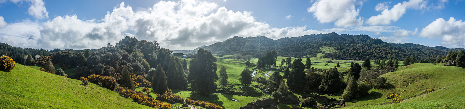 Waitomo, New Zealand