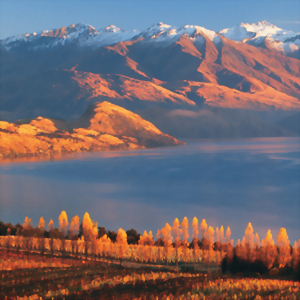 Wanaka's autumn colours