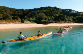 Kayakers exploring the Bay of Islands coastline, New Zealand