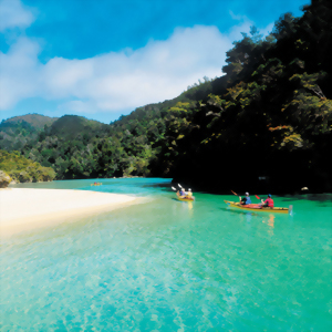 The crystal clear waters of the ocean at Abel Tasman near Nelson