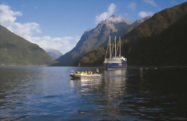 Kayakers exploring while on the Doubtful Sound overnight cruise