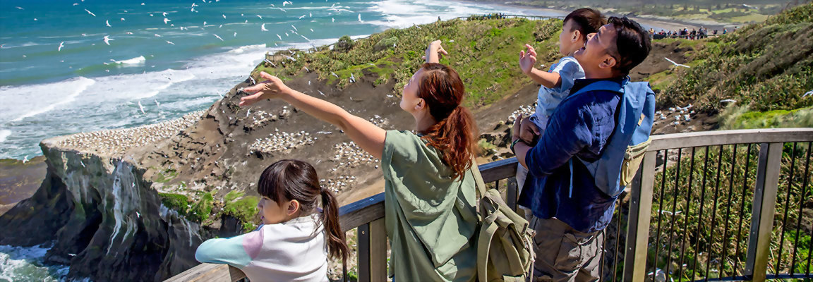 New Zealand family holidays - enjoying Muriwai Beach