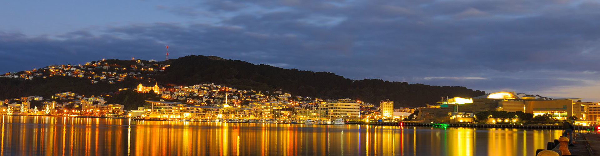 Wellington City Skyline and harbour at dusk