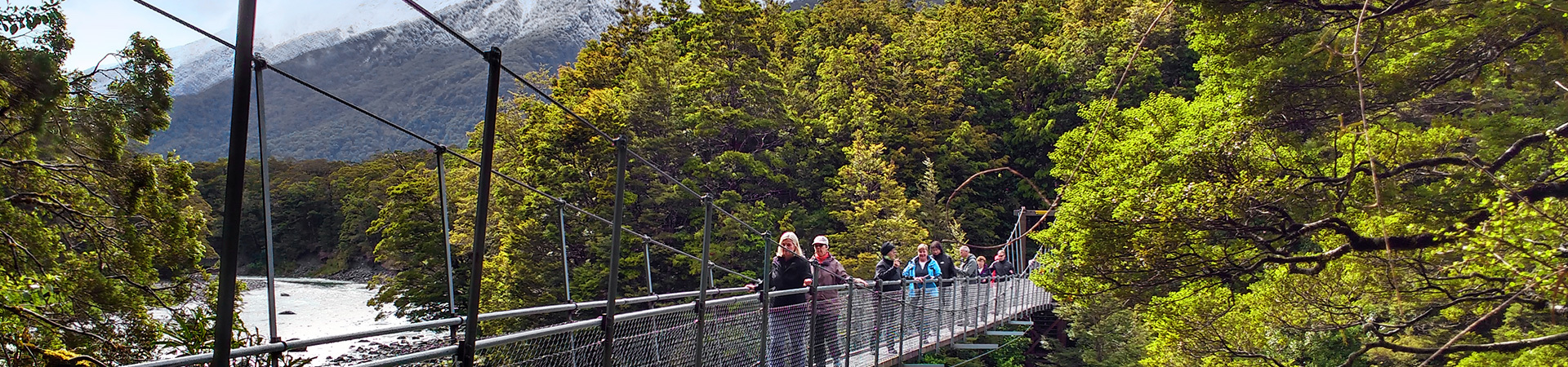 MoaTrek small group coach tour clients enjoying walk at Blue Pools, West Coast New Zealand